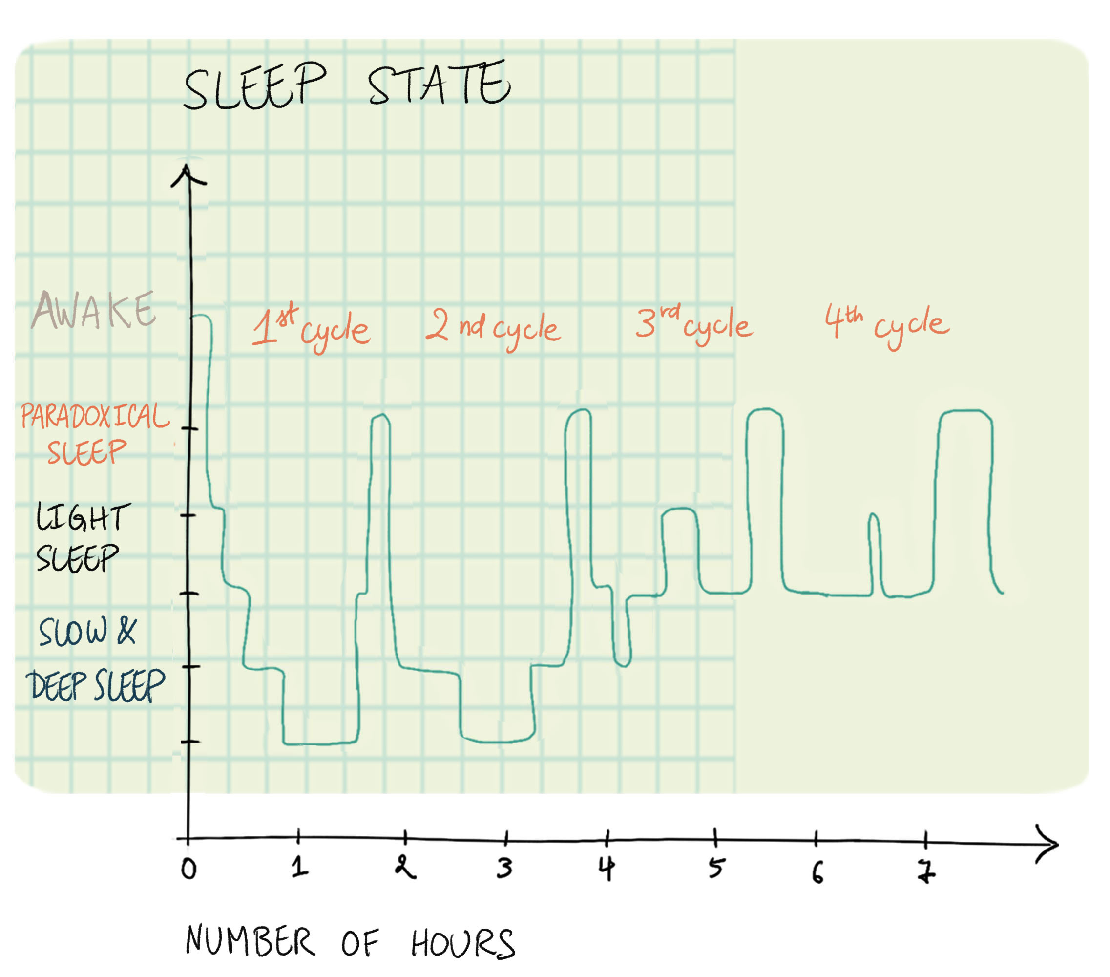 if you fall asleep easily, you have a 50% chance of thinking you stayed  awake during this phase  if you have a hard time falling asleep, it's 80%